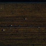 dunkles Holz 08